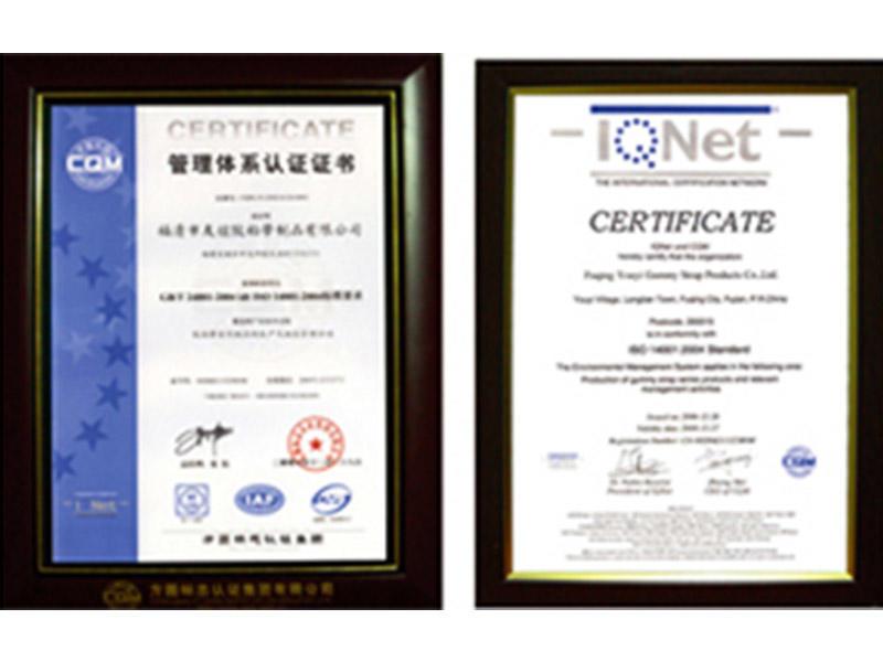 Fujian Youyi Adhesive Tape Group Co., Ltd. Certificate
